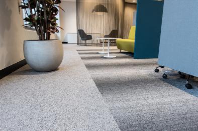 como escolher carpete